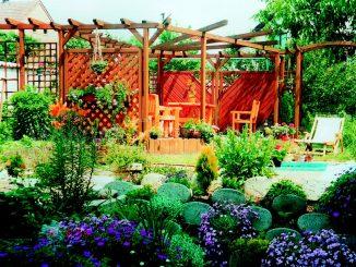 zahradní pergola