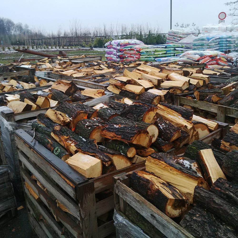 palivové dřevo, modřín
