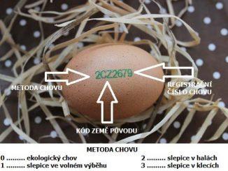oznaceni vajec na skorapce
